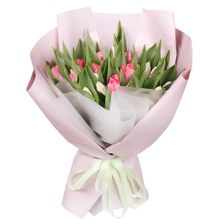 Bouquet 25 white and pink tulips