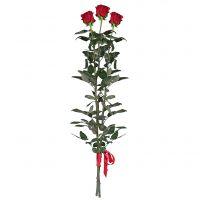 3 Red roses (80 cm)