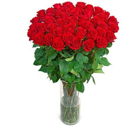 Bouquet Bouquet «Deluxe» (51 rozes, 1 meter)
