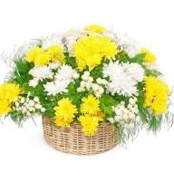 Bouquet Basket surprise