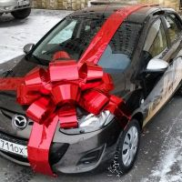 Buy gift bow on a car in the internet shop with delivery