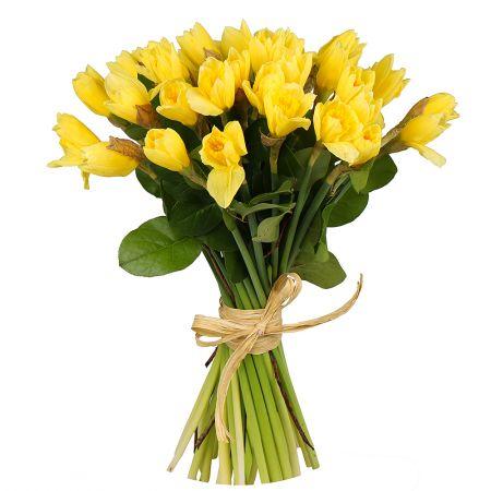 Bouquet Bouquet of daffodils (35 pcs.)