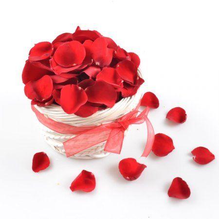 Bouquet Rose Petals