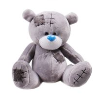 Teddy Bear   complements to flowers on UFL