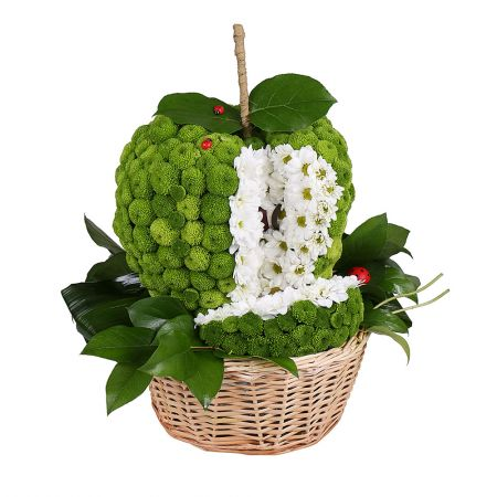 Flower toy ''Green apple''- order a flower toy now!